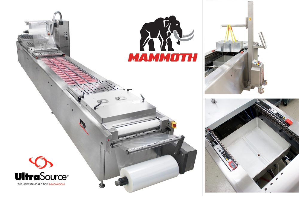 Mammoth Rollstock Packaging Machine - Horizontal Form Fill and Seal - 620mm Web Width Max